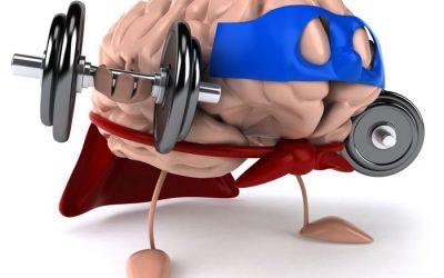Neurohacking program : Potencia tu cognitividad cerebral