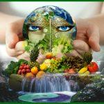 Salud holistica : Todo esta conectado